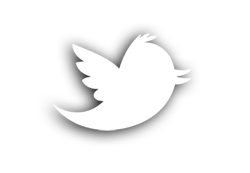 Logotipo twitter png 0