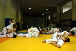 escuelas judo