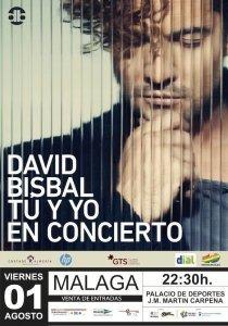 concierto david bisbal malaga 2014 580
